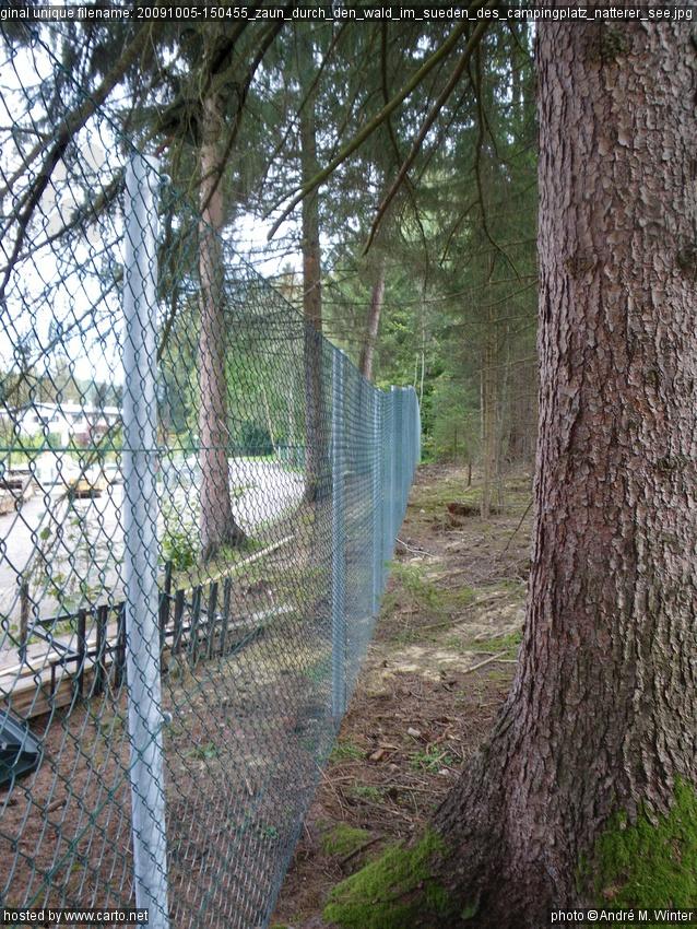 Zaun Durch Den Wald Im Suden Des Campingplatz Natterer See