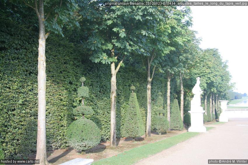 Arbustes taill s le long du tapis vert jardins de for Les pachas du canape vert