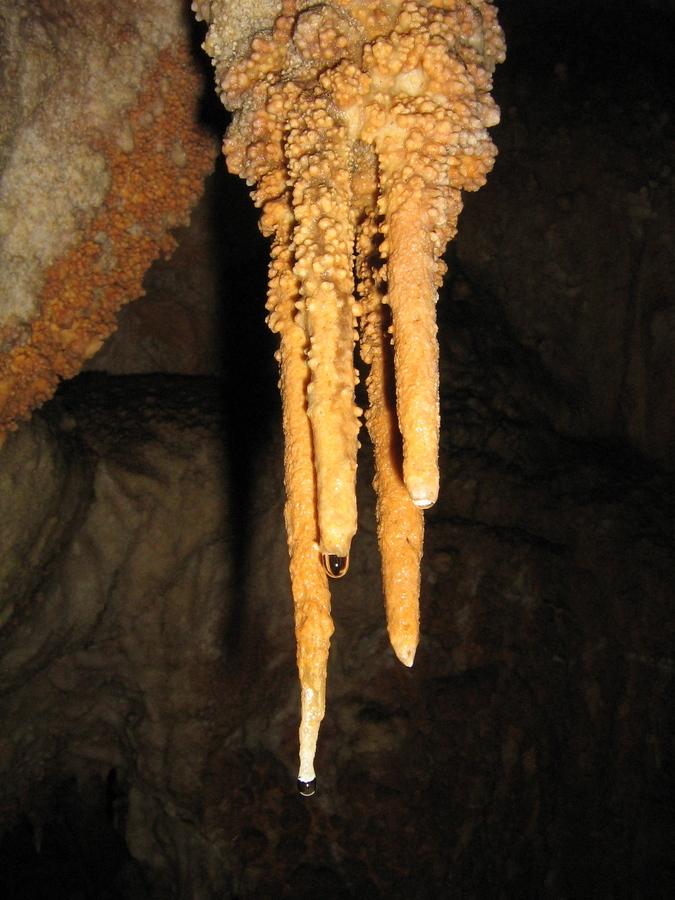 interesting stalactites with cauliflower sinter